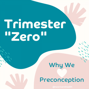Trimester Zero, Fertility, Guelph Fertility, Well Conceived